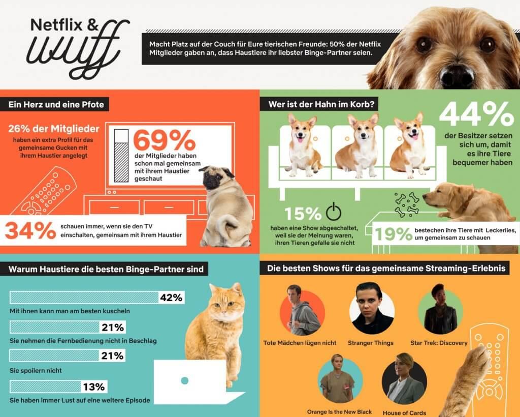 Netfliix Infografik